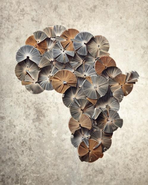 """Book Artwall  """"Africa"""""""