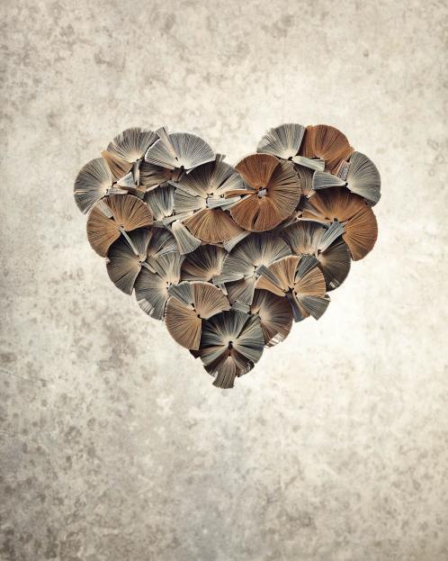 """Book Artwall """"Heart"""""""